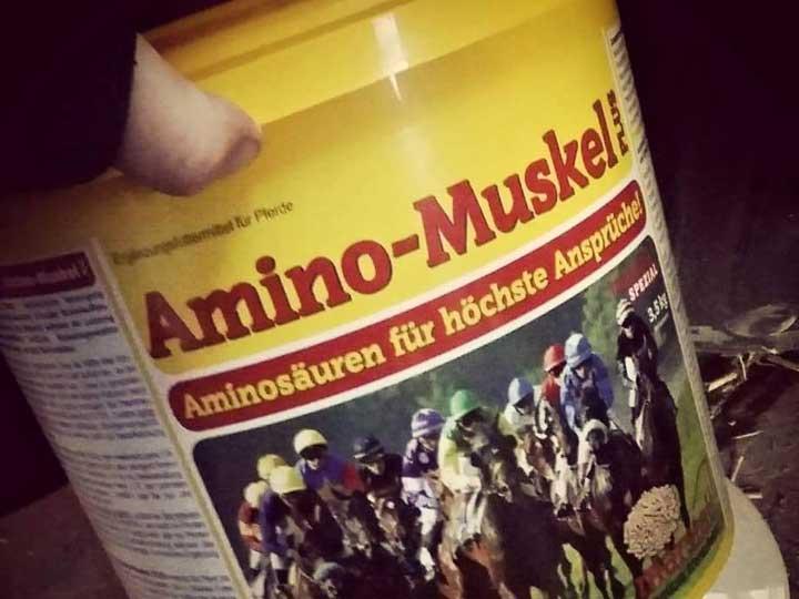 marstall Erfahrungsbericht Amino-Muskel Plus