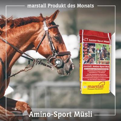 Amino-Sport Müsli