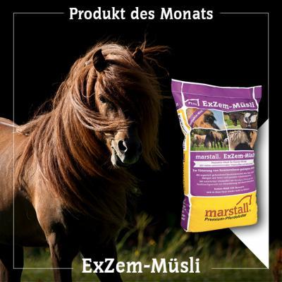 ExZem-Müsli – das Hautaktiv-Müsli