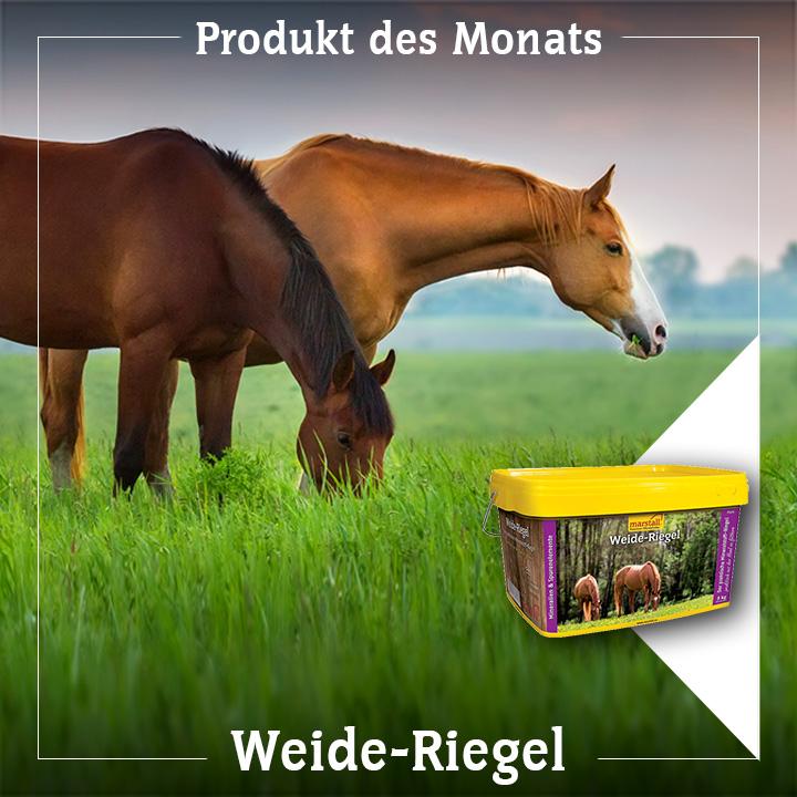 Weide-Riegel – die gezielte Versorgung bei Gras