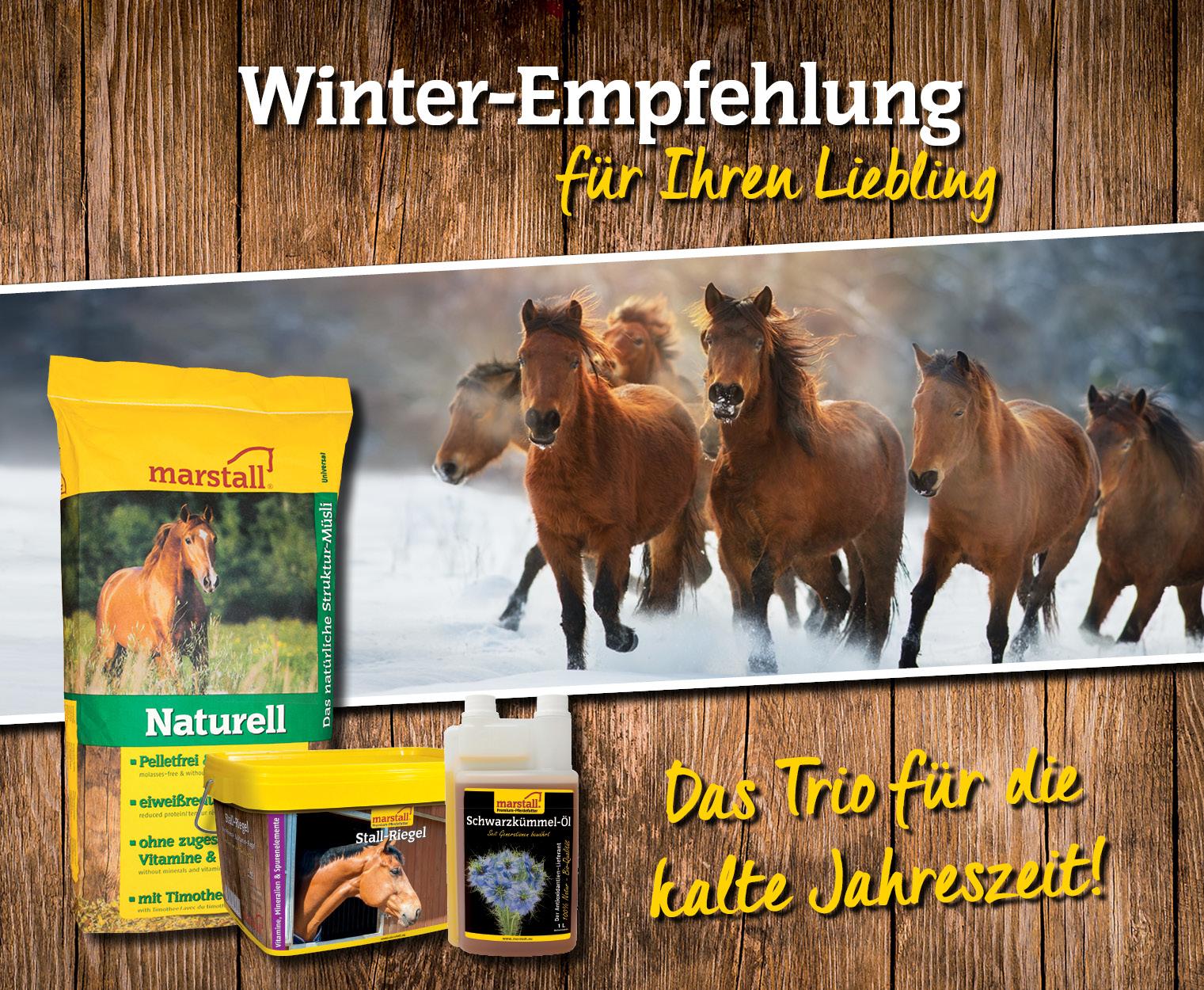 Winter-Empfehlung: marstall Aktion 1/20